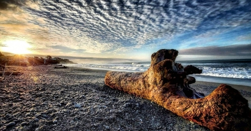 crazy cloud formations over the pacific ocean as the sun sets in the background, blue golden fiery sun with large driftwood in the forefront